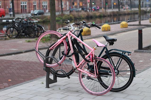 růžové a černé kolo